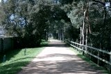 Railway Walk behind my house