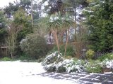 Snow next day